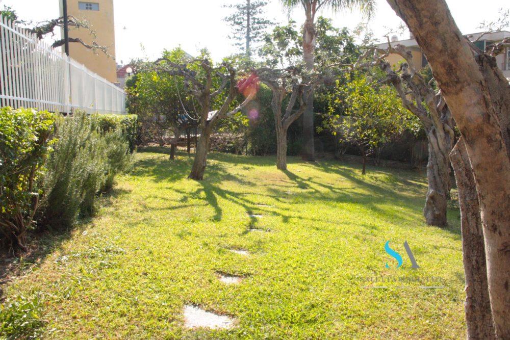 saletta ST115(11 giardino