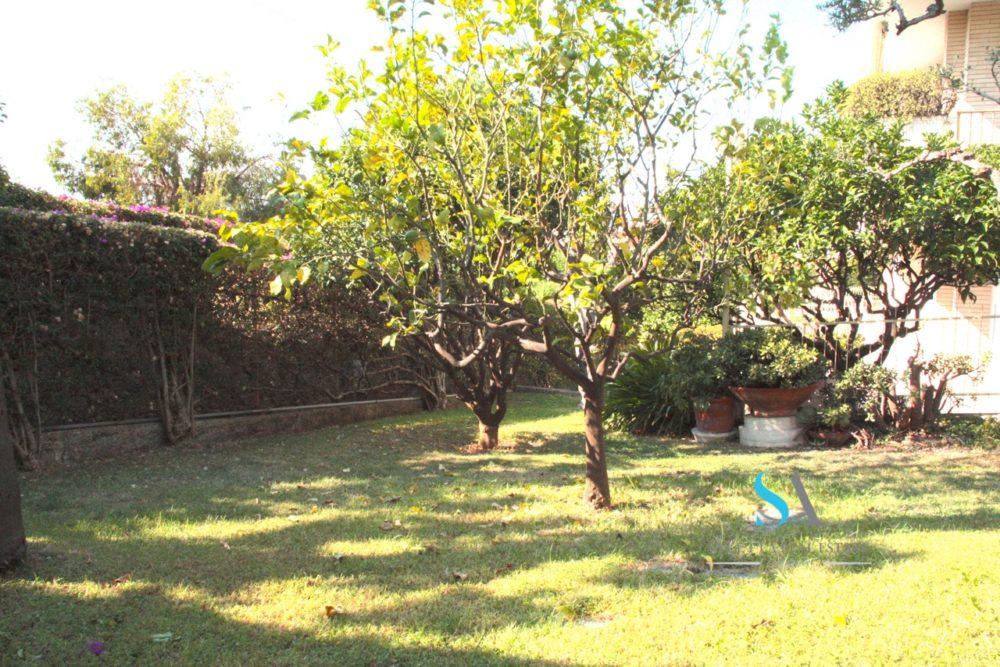 saletta ST115(12 giardino