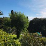 saletta SB122 giardino Sud