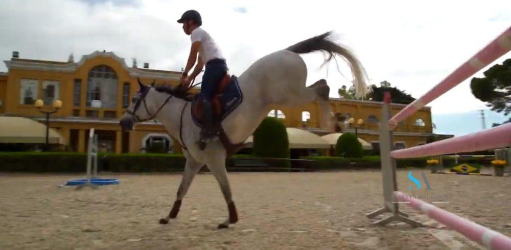 saletta SLB109 sport equitazione Sanremo